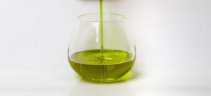 vaso cata aceite Jaén