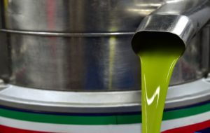 procesos mecánicos aceite oliva